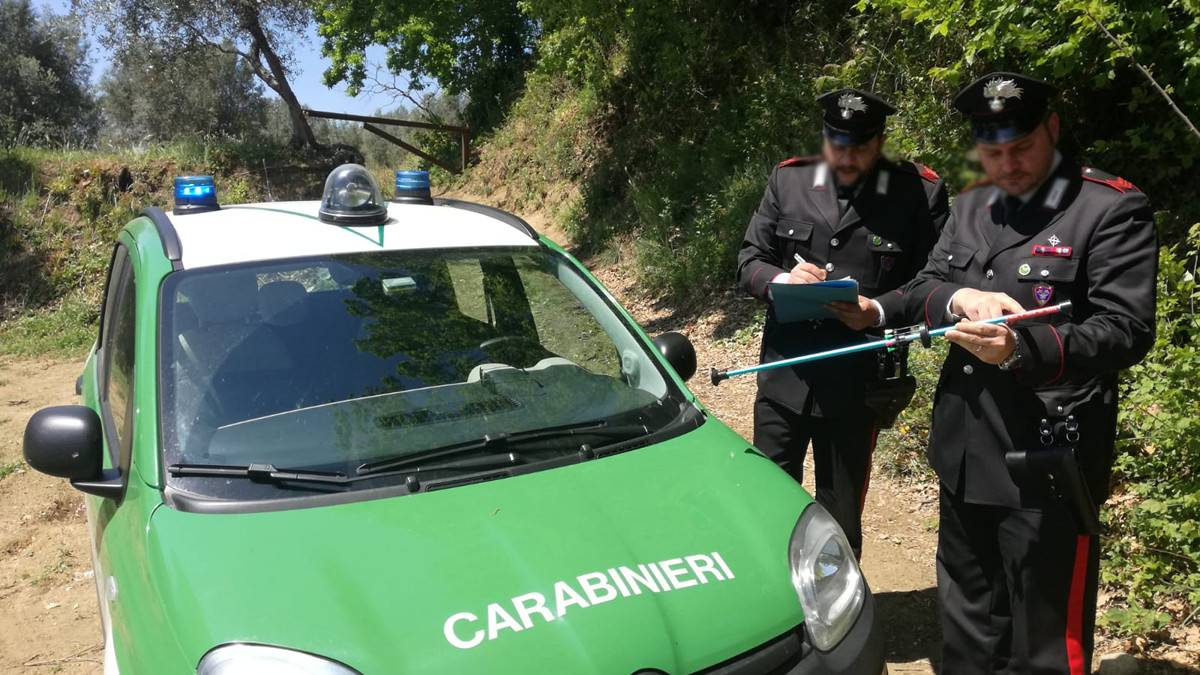 BRACCONAGGIO | Casertano a caccia di fagiani fermato sul Monte Tifata