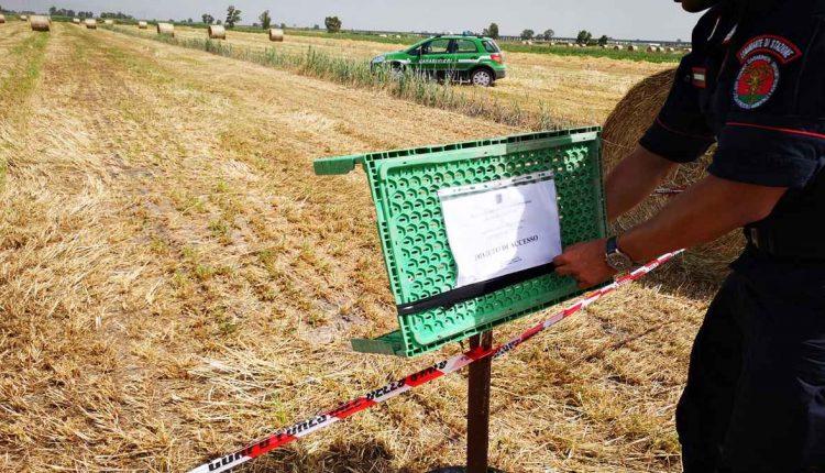 VILLA LITERNO. SEQUESTRATI DAI CARABINIERI FORESTALE ALTRI DUE FONDI AGRICOLI