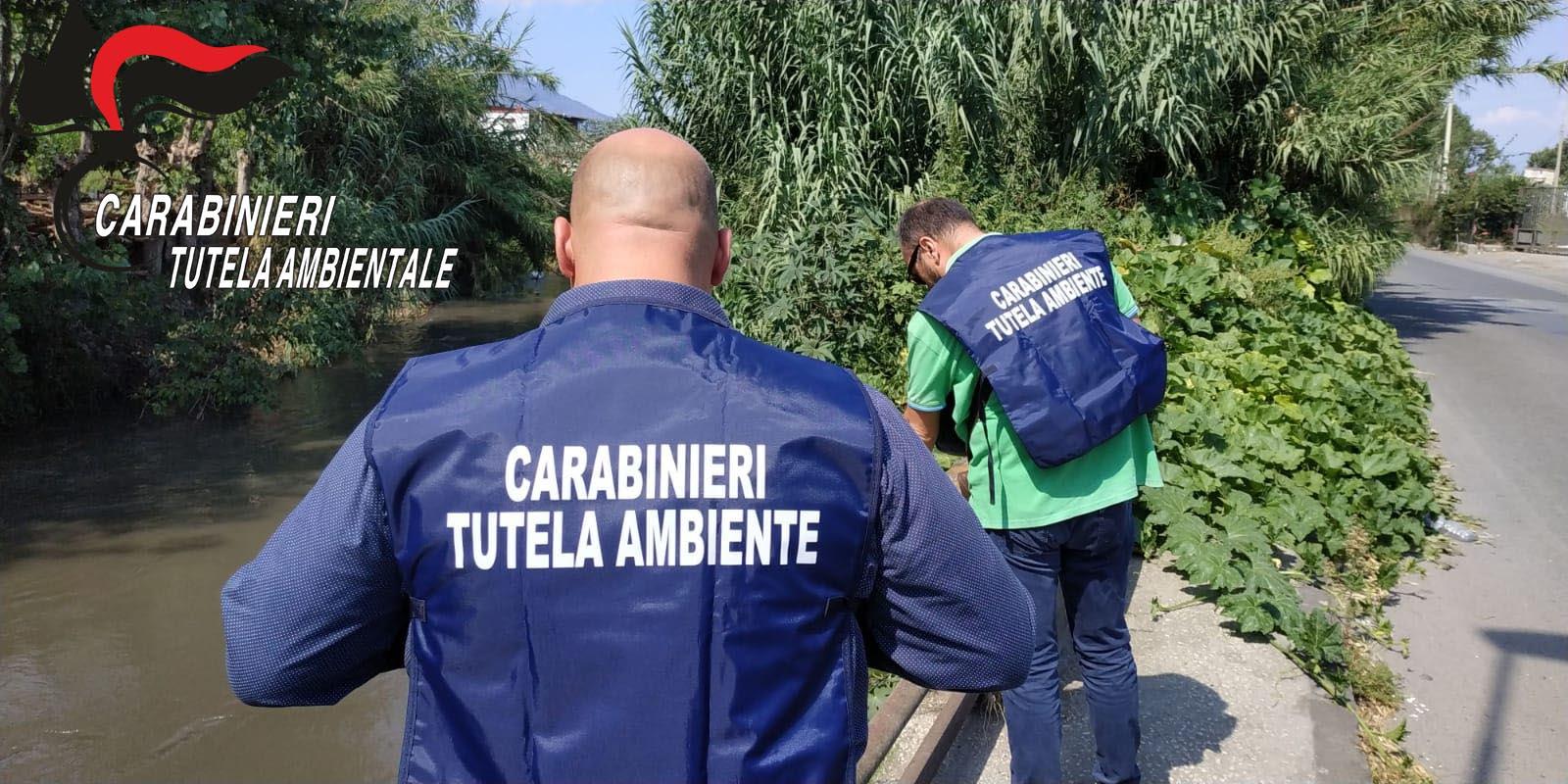 Smaltimento Rifiuti Sessa Aurunca i carabinieri del noe di caserta sequestrano autocarro e